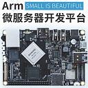 Arm微服务器 头像